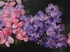 Gitte Bennink   Happy flowers