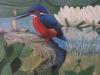 IJsvogel-van-Tinus-Reurings